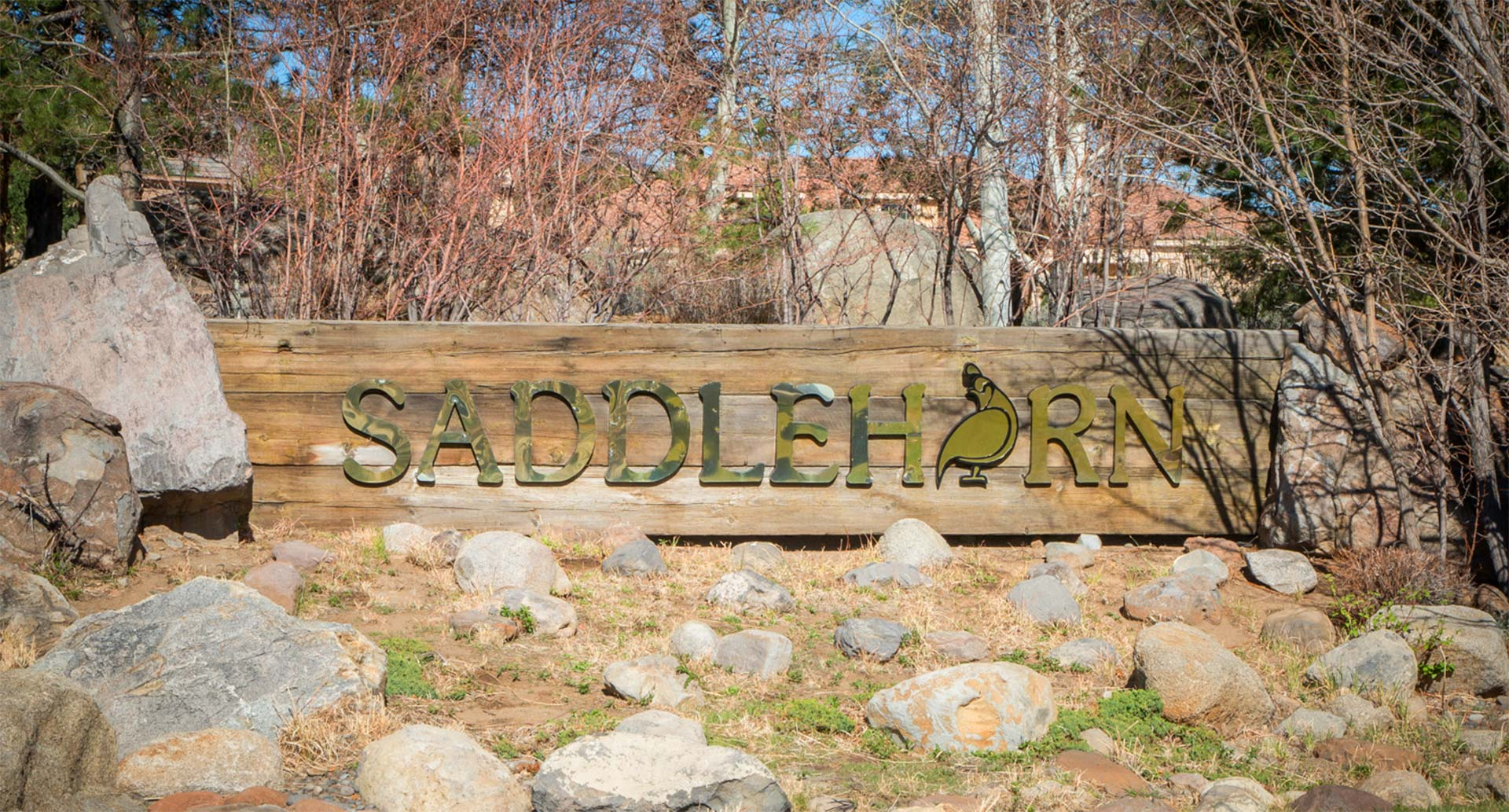saddlehorn homes for sale reno nv