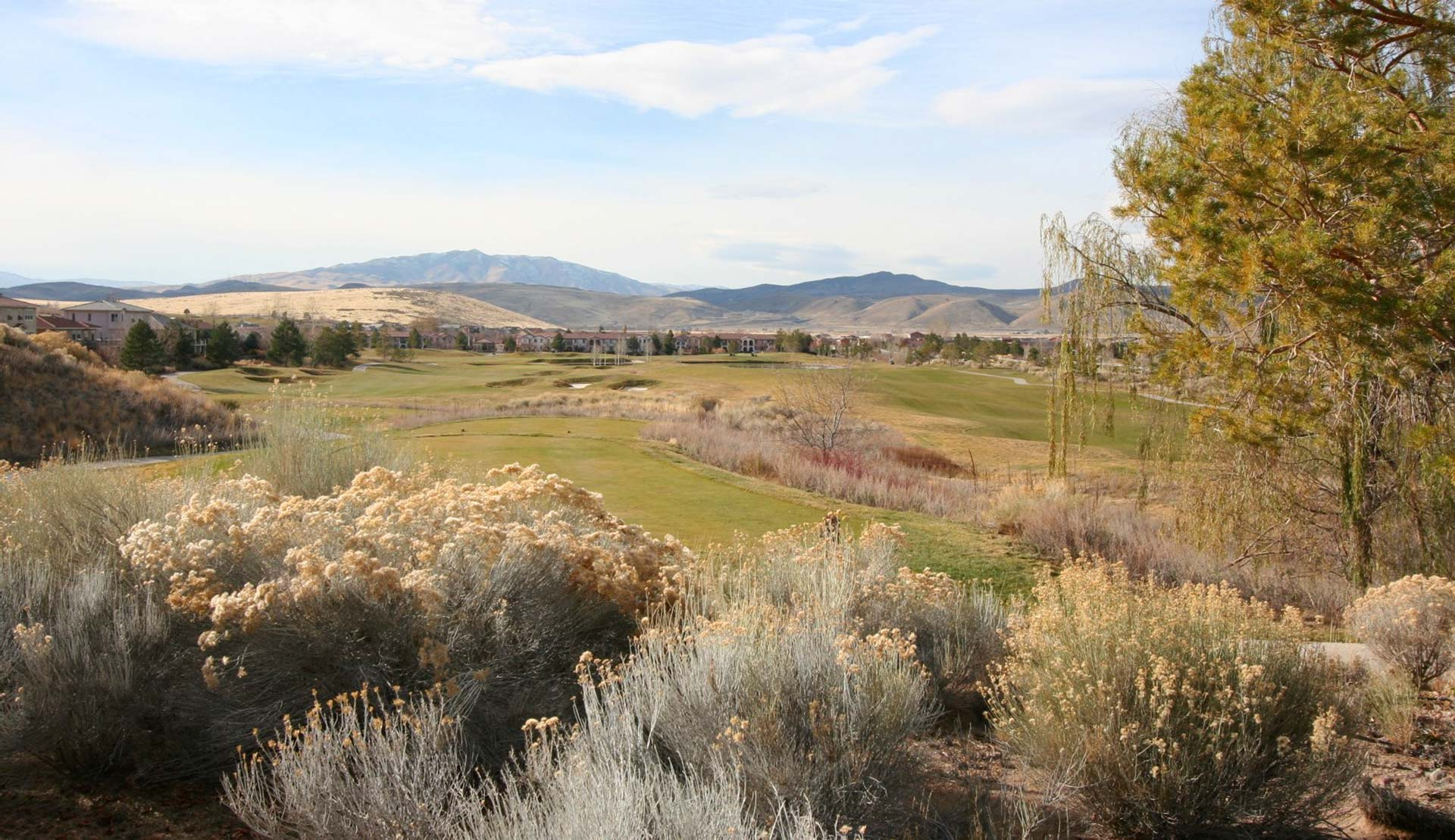 wingfield springs homes for sale sparks nv